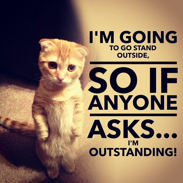 I'm going to go stand outside, So if anyone asks... I'm outstanding!