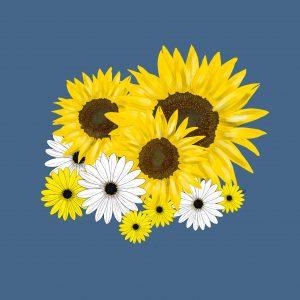 daisy-and-sunflower